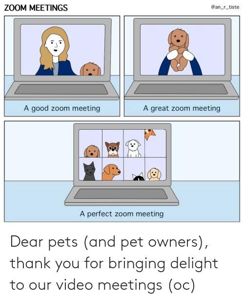 delight: Dear pets (and pet owners), thank you for bringing delight to our video meetings (oc)