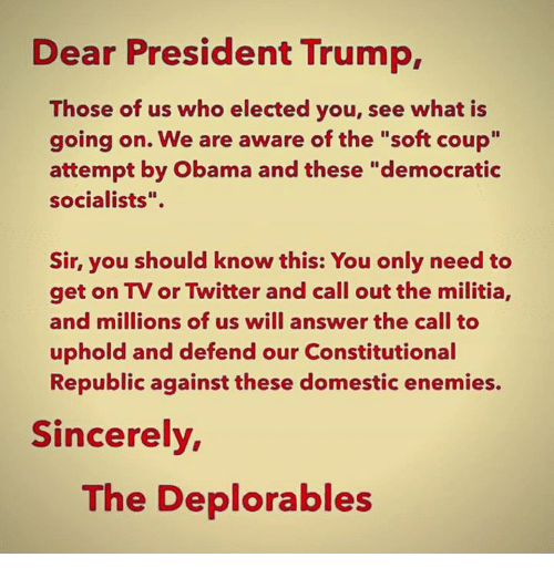 "Militia: Dear President Trump,  Those of us who elected you, see what is  going on. We are aware of the ""soft coup""  attempt by Obama and these ""democratic  socialists"".  Sir, you should know this: You only need to  get on TV or Twitter and call out the militia,  and millions of us will answer the call to  uphold and defend our Constitutional  Republic against these domestic enemies.  Sincerely  The Deplorables"