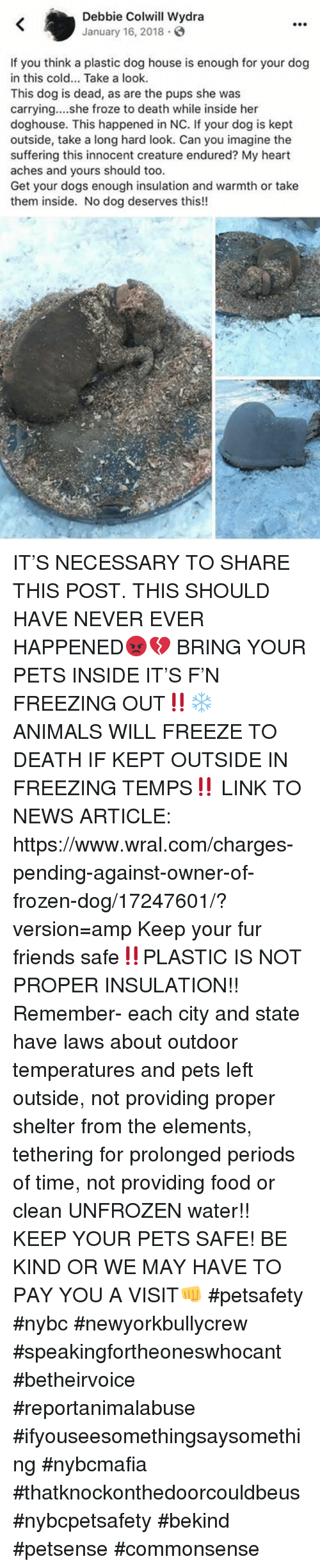 Animals, Dogs, and Food: Debbie Colwill Wydra  January 16, 2018.  If you think a plastic dog house is enough for your dog  in this cold... Take a look.  This dog is dead, as are the pups she was  carrying....she froze to death while inside her  doghouse. This happened in NC. If your dog is kept  outside, take a long hard look. Can you imagine the  suffering this innocent creature endured? My heart  aches and yours should too.  Get your dogs enough insulation and warmth or take  them inside. No dog deserves this!! IT'S NECESSARY TO SHARE THIS POST. THIS SHOULD HAVE NEVER EVER HAPPENED😡💔  BRING YOUR PETS INSIDE IT'S F'N FREEZING OUT‼️❄️ ANIMALS WILL FREEZE TO DEATH IF KEPT OUTSIDE IN FREEZING TEMPS‼️ LINK TO NEWS ARTICLE: https://www.wral.com/charges-pending-against-owner-of-frozen-dog/17247601/?version=amp Keep your fur friends safe‼️PLASTIC IS NOT PROPER INSULATION!! Remember- each city and state have laws about outdoor temperatures and pets left outside, not providing proper shelter from the elements, tethering for prolonged periods of time, not providing food or clean UNFROZEN water!! KEEP YOUR PETS SAFE! BE KIND OR WE MAY HAVE TO PAY YOU A VISIT👊  #petsafety #nybc #newyorkbullycrew #speakingfortheoneswhocant #betheirvoice #reportanimalabuse #ifyouseesomethingsaysomething #nybcmafia #thatknockonthedoorcouldbeus #nybcpetsafety #bekind #petsense #commonsense