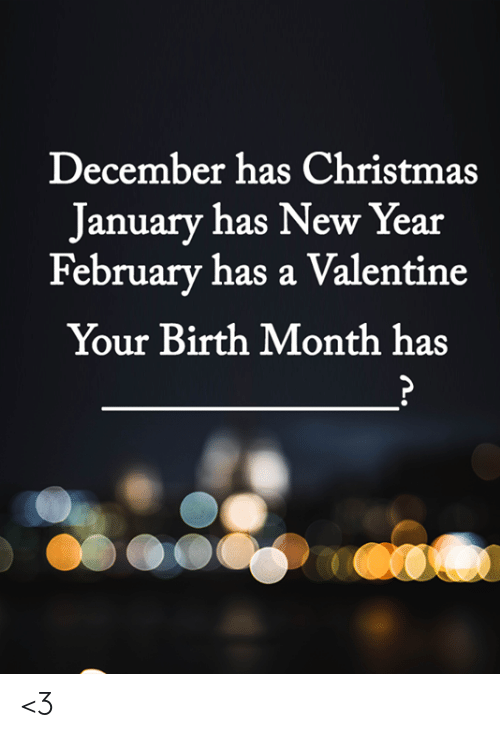 Christmas, Memes, and New Year's: December has Christmas  January has New Year  February has a Valentine  Your Birth Month has <3