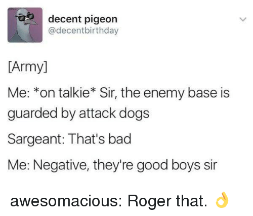 Bad, Dogs, and Roger: decent pigeon  @decentbirthday  [Army]  Me: *on talkie* Sir, the enemy base is  guarded by attack dogs  Sargeant: That's bad  Me: Negative, they're good boys sir awesomacious:  Roger that. 👌