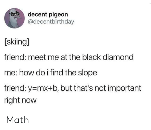 Black, Diamond, and Math: decent pigeon  @decentbirthday  [skiing]  friend: meet me at the black diamond  me: how do i find the slope  friend: y-mx+b, but that's not important  right now Math