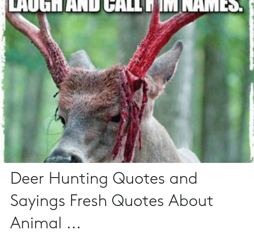Deer Hunting Quotes and Sayings Fresh Quotes About Animal ...