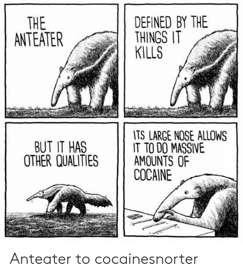 defined: DEFINED BY THE  THINGS IT  KILLS  THE  ANTEATER  TS LARGE NOSE ALLOWS  IT TO DO MASSIVE  AMOUNTS OF  COCAINE  BUT IT HAS  OTHER QUALITIES Anteater to cocainesnorter