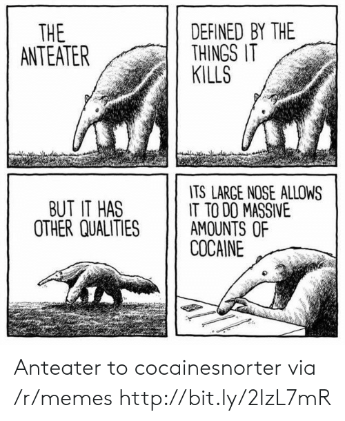 defined: DEFINED BY THE  THINGS IT  KILLS  THE  ANTEATER  TS LARGE NOSE ALLOWS  IT TO DO MASSIVE  AMOUNTS OF  COCAINE  BUT IT HAS  OTHER QUALITIES Anteater to cocainesnorter via /r/memes http://bit.ly/2IzL7mR