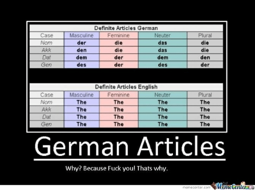 Fuck You Thats Why: Definite Articles German  Case  Feminine  Plural  Masculine  Neuter  Nom  der  die  das  die  Akk  den  die  das  die  Dat  dem  der  dem  den  Gen  des  der  der  des  Definite Articles English  Case  Masculine  Feminine  Plural  Neuter  Nom  The  The  The  The  Akk  The  The  The  The  Dat  The  The  The  The  The  Gen  The  The  The  German Articles  Why? Because Fuck you! Thats why.  MemeCenter  memecenter.com
