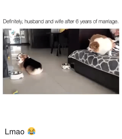 Definitely, Lmao, and Marriage: Definitely, husband and wife after 6 years of marriage.  262080 Lmao 😂
