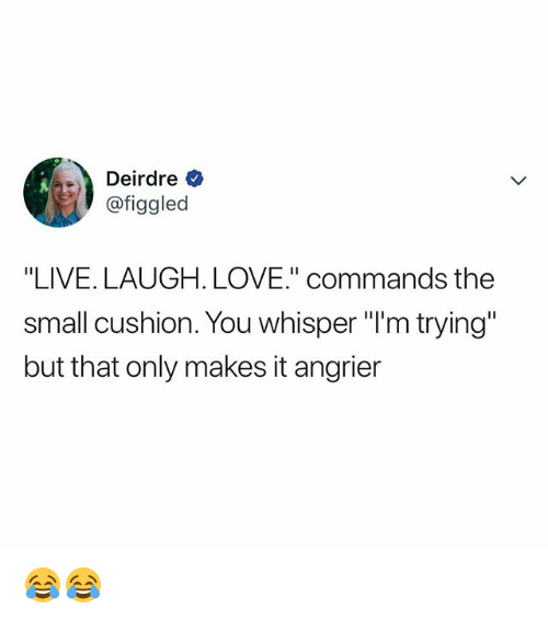 "Love, Live, and Relatable: Deirdre  @figgled  ""LIVE. LAUGH. LOVE"" commands the  small cushion. You whisper ""l'm trying""  but that only makes it angrier 😂😂"
