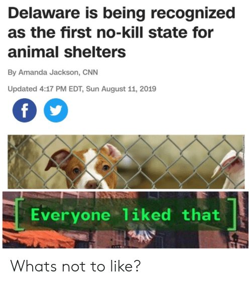 edt: Delaware is being recognized  as the first no-kill state for  animal shelters  By Amanda Jackson, CNN  Updated 4:17 PM EDT, Sun August 11, 2019  f  Everyone 1iked that Whats not to like?