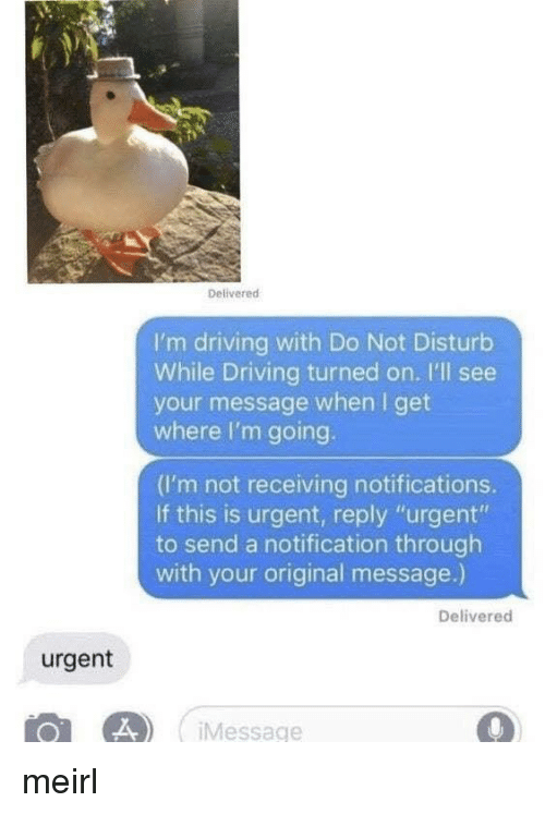 """Driving, MeIRL, and Reply: Delivered  I'm driving with Do Not Disturb  While Driving turned on. I'll see  your message when I get  where I'm going.  (I'm not receiving notifications.  If this is urgent, reply """"urgent""""  to send a notification through  with your original message.)  Delivered  urgent  Message meirl"""