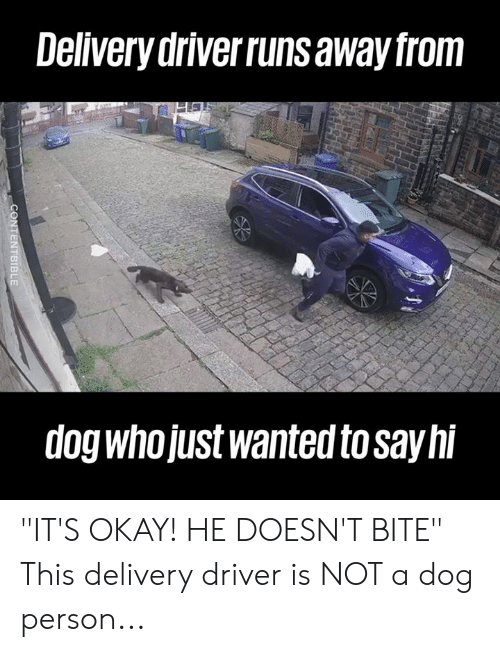 """Delivery Driver: Delivery driverruns away from  dog whojUst wanted to sayhi """"IT'S OKAY! HE DOESN'T BITE""""  This delivery driver is NOT a dog person..."""