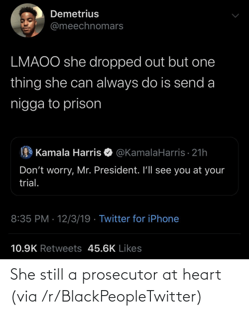 kamala: Demetrius  @meechnomars  LMAOO she dropped out but one  thing she can always do is send a  nigga to prison  Kamala Harris O @KamalaHarris · 21h  Don't worry, Mr. President. I'll see you at your  trial.  8:35 PM · 12/3/19 · Twitter for iPhone  10.9K Retweets 45.6K Likes She still a prosecutor at heart (via /r/BlackPeopleTwitter)