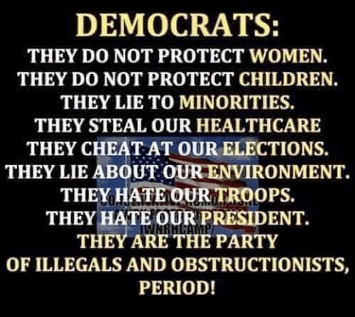Minorities: DEMOCRATS:  THEY DO NOT PROTECT WOMEN.  THEY DO NOT PROTECT CHILDREN.  THEY LIE TO MINORITIES.  THEY STEAL OUR HEALTHCARE  THEY CHEAT AT OUR ELECTIONS  THEY LIE ABOUT OUR ENVIRONMENT.  THEY HATE OUR TROOPS.  THEY HATE OUR PRESIDENT.  THEY ARE THE PARTY  OF ILLEGALS AND OBSTRUCTIONISTS,  PERIOD!