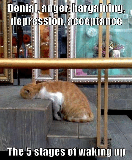 Depression, Anger, and Acceptance: Denial anger bargaining,  depression, acceptance  The 5 stages of waking up