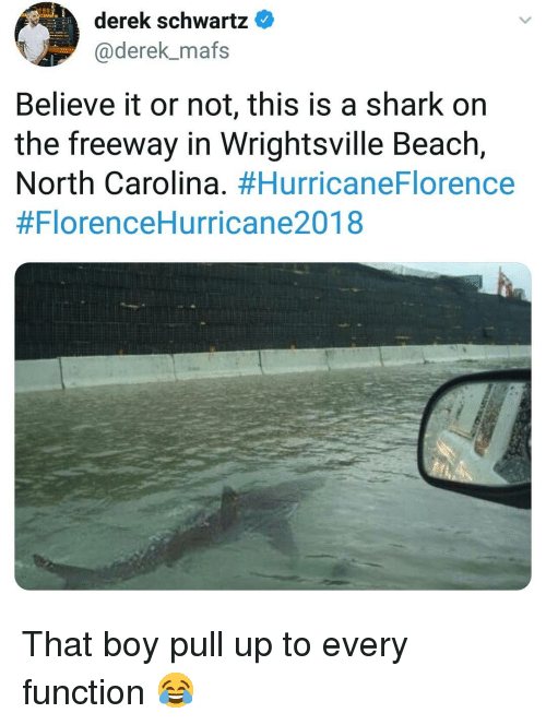 That Boy: derek schwartz  @derek_mafs  Believe it or not, this is a shark on  the freeway in Wrightsville Beach,  North Carolina. That boy pull up to every function 😂