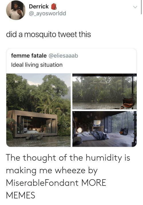 Dank, Memes, and Target: Derrick  @ayosworldd  did a mosquito tweet this  femme fatale @eliesaaab  Ideal living situation The thought of the humidity is making me wheeze by MiserableFondant MORE MEMES