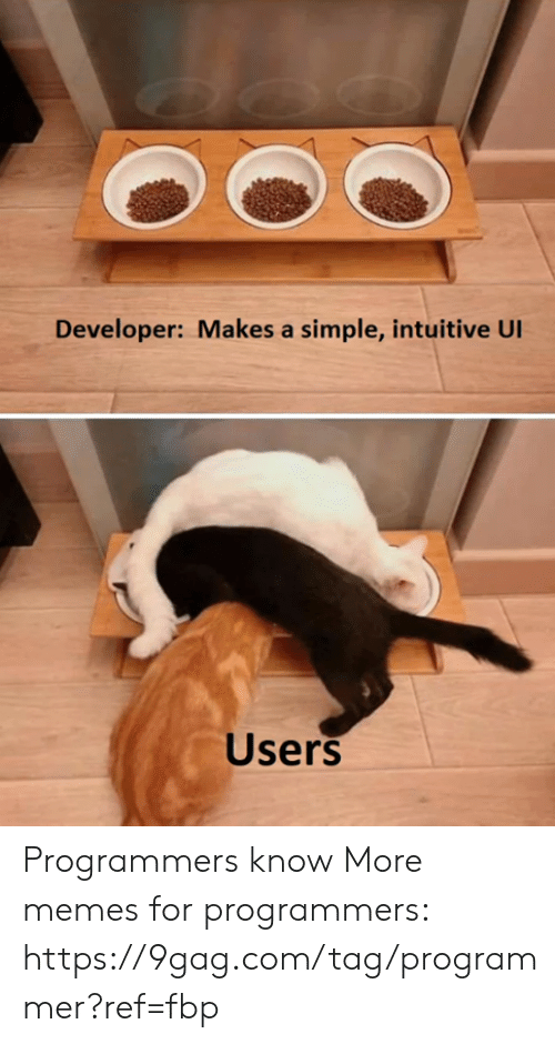 9gag, Dank, and Memes: Developer: Makes a simple, intuitive Ul  Users Programmers know More memes for programmers: https://9gag.com/tag/programmer?ref=fbp