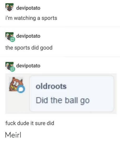 dude: devipotato  i'm watching a sports  devipotato  the sports did good  devipotato  oldroots  Did the ball go  fuck dude it sure did Meirl