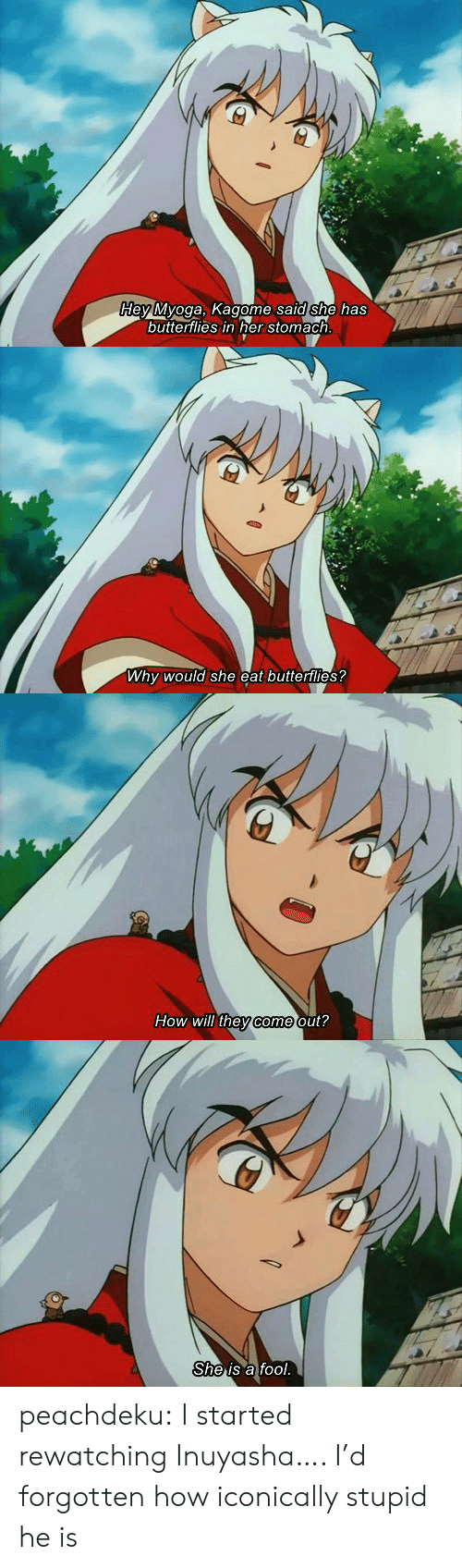Rewatching: dey Myoga, Kagome sald she has  buttertlies in her stomach   Why would she eat butterflies?   How will they come out?   She is a fool. peachdeku:  I started rewatching Inuyasha…. I'd forgotten how iconically stupid he is