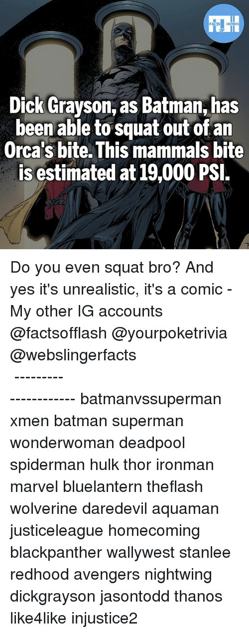 Batman, Memes, and Orcas: Dick Grayson, as Batman, has  been able to squat out of an  Orca's bite. This mammals bite  is estimated at 19,000 PSI Do you even squat bro? And yes it's unrealistic, it's a comic - My other IG accounts @factsofflash @yourpoketrivia @webslingerfacts ⠀⠀⠀⠀⠀⠀⠀⠀⠀⠀⠀⠀⠀⠀⠀⠀⠀⠀⠀⠀⠀⠀⠀⠀⠀⠀⠀⠀⠀⠀⠀⠀⠀⠀⠀⠀ ⠀⠀--------------------- batmanvssuperman xmen batman superman wonderwoman deadpool spiderman hulk thor ironman marvel bluelantern theflash wolverine daredevil aquaman justiceleague homecoming blackpanther wallywest stanlee redhood avengers nightwing dickgrayson jasontodd thanos like4like injustice2