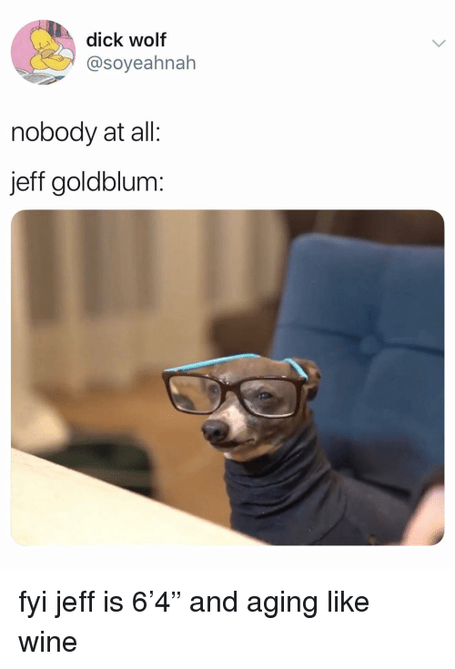 "Memes, Wine, and Dick: dick wolf  @soyeahnah  nobody at all:  jeff goldblum: fyi jeff is 6'4"" and aging like wine"