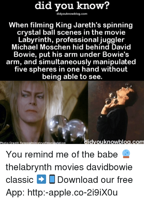 Labyrinth: did did know?  know?  When filming King Jareth's spinning  crystal ball scenes in the movie  Labyrinth, professional juggler  Michael Moschen hid behind David  Bowie, put his arm under Bowie's  arm, and simultaneously manipulated  five spheres in one hand without  being able to see.  idyouknowblog.com  Photo credit fanpop/ministryofmanipulation You remind me of the babe 🔮 thelabrynth movies davidbowie classic ➡📱Download our free App: http:-apple.co-2i9iX0u