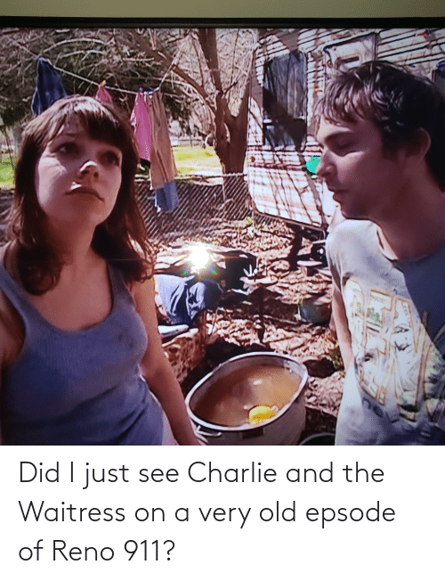 Charlie: Did I just see Charlie and the Waitress on a very old epsode of Reno 911?