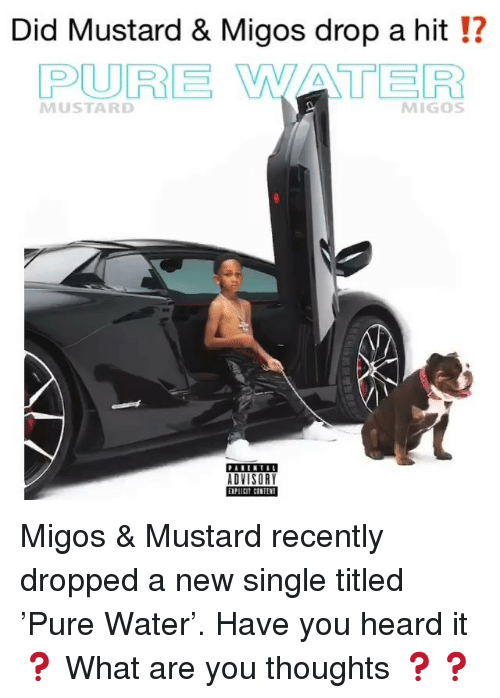 Memes, Migos, and Water: Did Mustard & Migos drop a hit !?  PURE WATER  MUSTARD  MIGOS  ADVISORY  plitit CONTEN Migos & Mustard recently dropped a new single titled 'Pure Water'. Have you heard it❓ What are you thoughts ❓❓