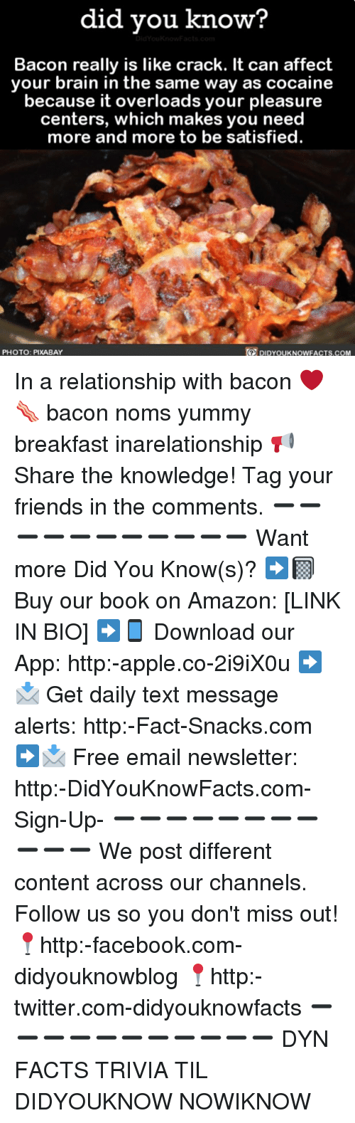 affectation: did vou know?  Bacon really is like crack. It can affect  your brain in the same way as cocaine  because it overloads your pleasure  centers, which makes you need  more and more to be satisfied  te  PHOTO: PIXABAY  DIDYOUKNOWFACTS.COM In a relationship with bacon ❤️🥓 bacon noms yummy breakfast inarelationship 📢 Share the knowledge! Tag your friends in the comments. ➖➖➖➖➖➖➖➖➖➖➖ Want more Did You Know(s)? ➡📓 Buy our book on Amazon: [LINK IN BIO] ➡📱 Download our App: http:-apple.co-2i9iX0u ➡📩 Get daily text message alerts: http:-Fact-Snacks.com ➡📩 Free email newsletter: http:-DidYouKnowFacts.com-Sign-Up- ➖➖➖➖➖➖➖➖➖➖➖ We post different content across our channels. Follow us so you don't miss out! 📍http:-facebook.com-didyouknowblog 📍http:-twitter.com-didyouknowfacts ➖➖➖➖➖➖➖➖➖➖➖ DYN FACTS TRIVIA TIL DIDYOUKNOW NOWIKNOW