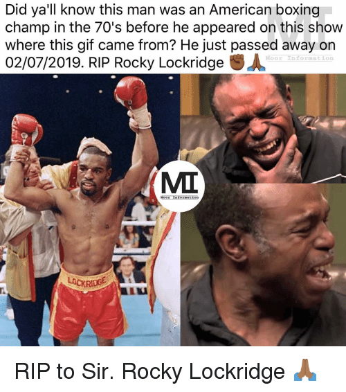 Boxing, Gif, and Memes: Did ya'lilknow this man was an American boxing  champ in the 70's before he appeared on this show  where this gif came from? He just passed away on  02/07/2019. RIP Rocky Lockridge .人  Moor Information  ос  MI  Moor InFOrmatLon  LOCKRIDG RIP to Sir. Rocky Lockridge 🙏🏾