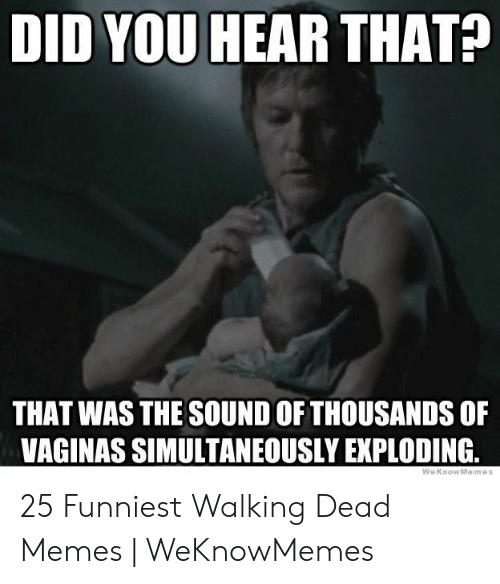 Daryl Dixon Memes: DID YOU HEAR THAT?  THAT WAS THE SOUND OF THOUSANDS OF  VAGINAS SIMULTANEOUSLY EXPLODING 25 Funniest Walking Dead Memes | WeKnowMemes