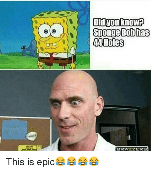 Memes, Holes, and 🤖: Did you know:0  Sponge Bob has  44 Holes This is epic😂😂😂😂
