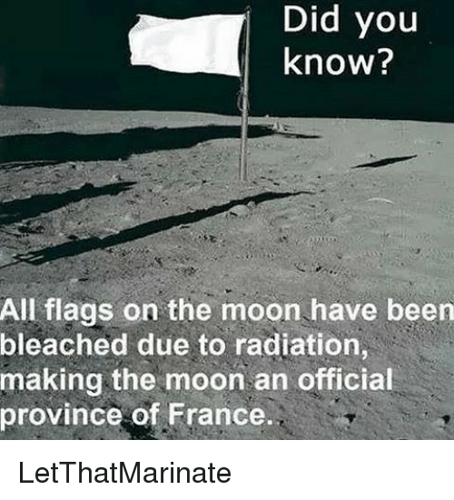 Memes, France, and Moon: Did  you  know?  All flags on the moon have been  bleached due to radiation,  making the moon an official  province of France. LetThatMarinate