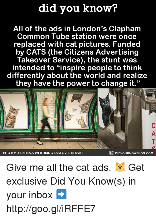 "Dank, Common, and Http: did you know?  All of the ads in London's Clapham  Common Tube station were once  replaced with cat pictures. Funded  by CATS (the Citizens Advertising  Takeover Service), the stunt was  intended to people to think  differently about the world and realize  they have the power to change it.""  DIDYOUKNOWBLOG.coM  PHOTO: CITIZENS ADVERTISING TAKEOVER SERVICE Give me all the cat ads. 🐱  Get exclusive Did You Know(s) in your inbox ➡ http://goo.gl/iRFFE7"