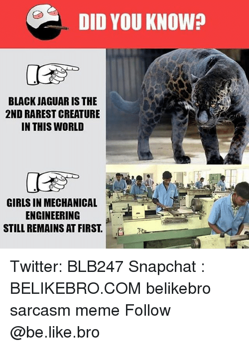 Jaguares: DID YOU KNOW?  BLACK JAGUAR IS THE  2ND RAREST CREATURE  IN THIS WORLD  GIRLS IN MECHANICAL  ENGINEERING  STILL REMAINS AT FIRST.E Twitter: BLB247 Snapchat : BELIKEBRO.COM belikebro sarcasm meme Follow @be.like.bro