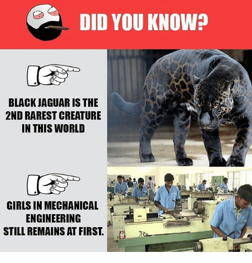 Jaguares: DID YOU KNOW?  BLACK JAGUAR IS THE  2ND RAREST CREATURE  IN THIS WORLD  GIRLS IN MECHANICAL  ENGINEERING  STILL REMAINS AT FIRST.