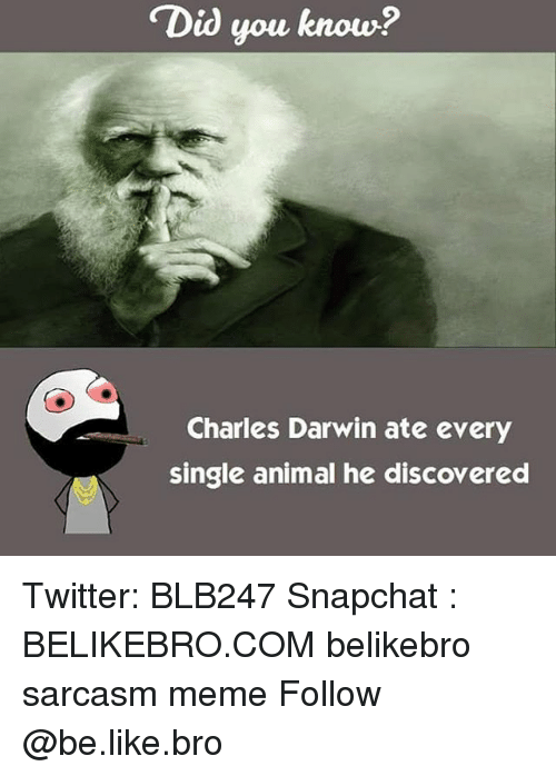 "Be Like, Meme, and Memes: ""Did you know?  Charles Darwin ate every  single animal he discovered Twitter: BLB247 Snapchat : BELIKEBRO.COM belikebro sarcasm meme Follow @be.like.bro"