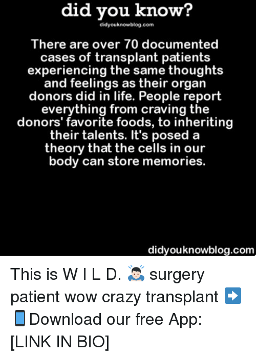 craziness: did you know?  did youknowblog.com  There are over 70 documented  cases of transplant patients  experiencing the same thoughts  and feelings as their organ  donors did in life. People report  everything from craving the  donors' favorite foods, to inheriting  their talents. It's posed a  theory that the cells in our  body can store memories.  didyouknowblog.com This is W I L D. 🙇🏻 surgery patient wow crazy transplant ➡📱Download our free App: [LINK IN BIO]
