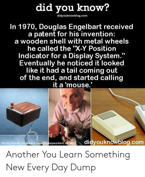 "X Y: did you know?  didyouknowblog.com  In 1970, Douglas Engelbart received  a patent for his invention:  a wooden shell with metal wheels  he called the ""X-Y Position  Indicator for a Display System  Eventually he noticed it looked  like it had a tail coming out  of the end, and started calling  it a 'mouse.  Photo Credit truotedrevi  didyouknowblog.com  ependent Another You Learn Something New Every Day Dump"