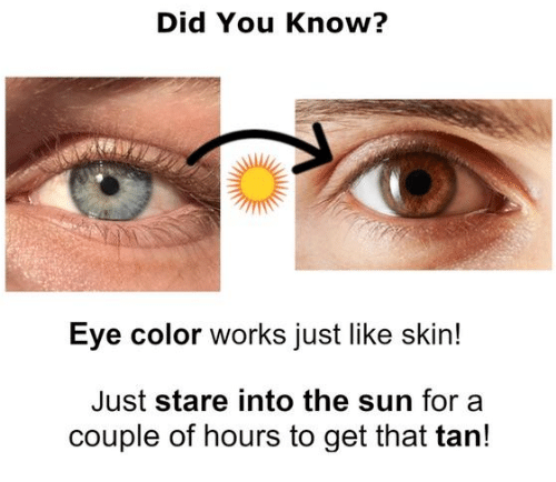 eye color: Did You Know?  Eye color works just like skin!  Just stare into the sun for a  couple of hours to get that tarn!