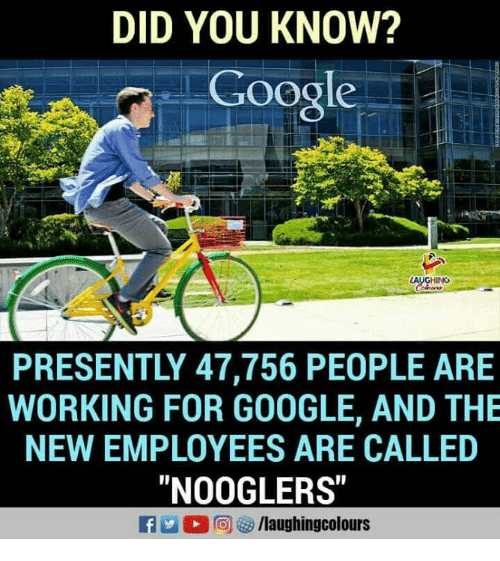 """Google, Indianpeoplefacebook, and Working: DID YOU KNOW?  Google  PRESENTLY 47,756 PEOPLE ARE  WORKING FOR GOOGLE, AND THE  NEW EMPLOYEES ARE CALLED  """"NOOGLERS"""""""