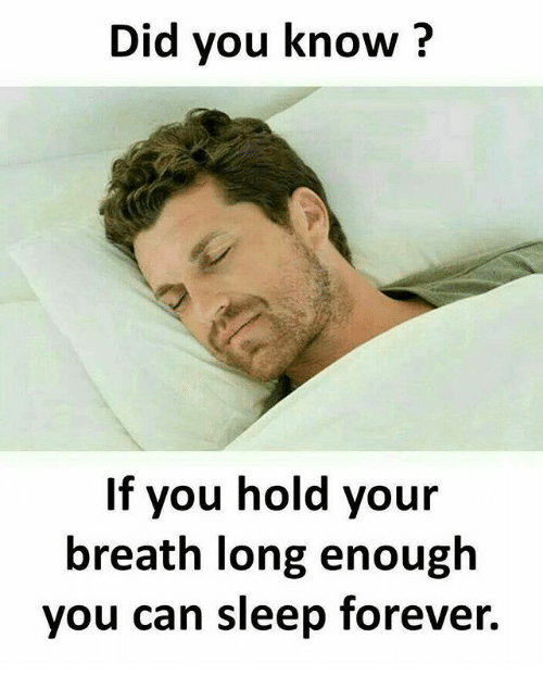 Memes, Forever, and Sleep: Did you know?  If you hold your  breath long enough  you can sleep forever.