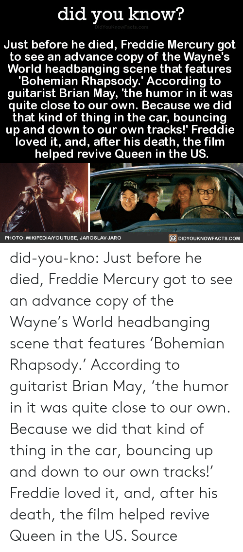 guitarist: did you know?  Just before he died, Freddie Mercury got  to see an advance copy of the Wayne's  World headbanging scene that features  'Bohemian Rhapsody.' According to  guitarist Brian May, 'the humor in it was  quite close to our own. Because we did  that kind of thing in the car, bouncing  up and down to our own tracks!' Freddie  loved it, and, after his death, the film  helped revive Queen in the US.  PHOTO: WIKIPEDIAYOUTUBE, JAROSLAV JARO  回DIDYOUKNOWFACTS.COM did-you-kno:  Just before he died, Freddie Mercury got  to see an advance copy of the Wayne's  World headbanging scene that features  'Bohemian Rhapsody.' According to  guitarist Brian May, 'the humor in it was  quite close to our own. Because we did  that kind of thing in the car, bouncing  up and down to our own tracks!' Freddie  loved it, and, after his death, the film  helped revive Queen in the US.  Source