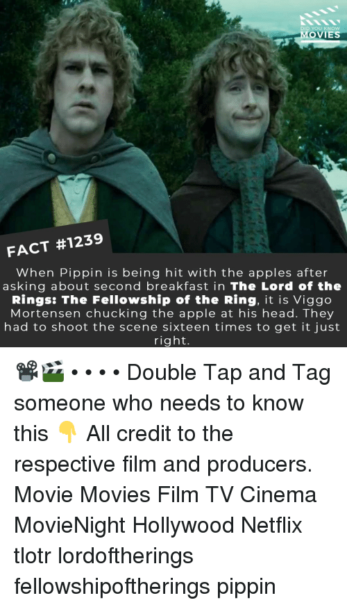The Ring: DID YOU KNOw  MOVIES  FACT #1239  When Pippin is being hit with the apples after  asking about second breakfast in The Lord of the  Rings: The Fellowship of the Ring, it is Viggo  Mortensen chucking the apple at his head. They  had to shoot the scene sixteen times to get it just  right. 📽️🎬 • • • • Double Tap and Tag someone who needs to know this 👇 All credit to the respective film and producers. Movie Movies Film TV Cinema MovieNight Hollywood Netflix tlotr lordoftherings fellowshipoftherings pippin