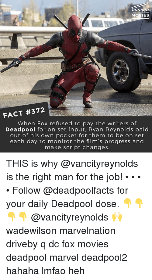 Deadpoole: DID YOU KNOW  MOVIES  FACT #372  When Fox refused to pay the writers of  Deadpool for on set input, Ryan Reynolds paid  out of his own pocket for them to be on set  each day to monitor the film's progress and  make script changes THIS is why @vancityreynolds is the right man for the job! • • • • Follow @deadpoolfacts for your daily Deadpool dose. 👇👇👇👇 @vancityreynolds 🙌 wadewilson marvelnation driveby q dc fox movies deadpool marvel deadpool2 hahaha lmfao heh