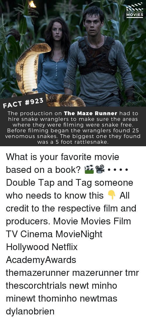 Memes, Movies, and Netflix: DID YOU KNOW  MOVIES  FACT #923  The production on The Maze Runner had to  hire snake wranglers to make sure the areas  where they were filming were snake free  Before filming began the wranglers found 25  venomous snakes. The biggest one they found  was a 5 foot rattlesnake What is your favorite movie based on a book? 🎬📽️ • • • • Double Tap and Tag someone who needs to know this 👇 All credit to the respective film and producers. Movie Movies Film TV Cinema MovieNight Hollywood Netflix AcademyAwards themazerunner mazerunner tmr thescorchtrials newt minho minewt thominho newtmas dylanobrien