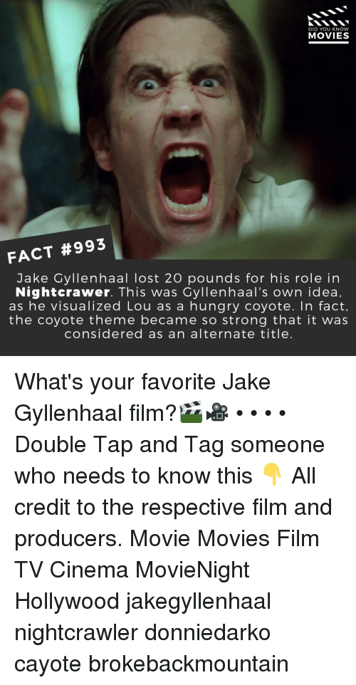 Jake Gyllenhaal: DID YOU KNOW  MOVIES  FACT #993  Jake Gyllenhaal lost 20 pounds for his role in  Nightcrawer. This was Cyllenhaal's own idea,  as he visualized Lou as a hungry coyote. In fact,  the coyote theme became so strong that it was  considered as an alternate title. What's your favorite Jake Gyllenhaal film?🎬🎥 • • • • Double Tap and Tag someone who needs to know this 👇 All credit to the respective film and producers. Movie Movies Film TV Cinema MovieNight Hollywood jakegyllenhaal nightcrawler donniedarko cayote brokebackmountain