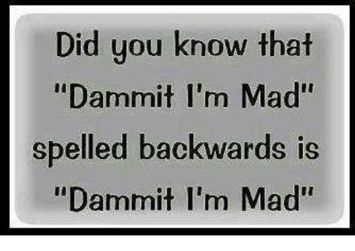 "Dammits: Did you know that  ""Dammit I'm Mad""  spelled backwards is  ""Dammit I'm Mad"""