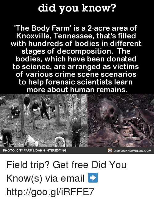 25 Best Memes About Forensic Psychology Forensic Psychology Memes