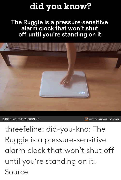 Clock, Pressure, and Tumblr: did you know?  The Ruggie is a pressure-sensitive  alarm clock that won't shut  off until you're standing on it.  DE 90  PHOTO: YOUTUBE/UPCOMING  DIDYOUKNOWBLOG.COM threefeline: did-you-kno:  The Ruggie is a pressure-sensitive alarm clock that won't shut off until you're standing on it.  Source